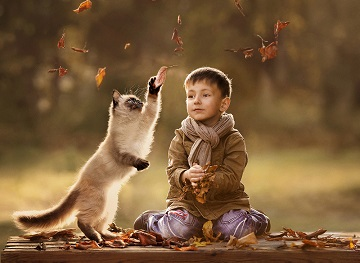 Kid and cat playing